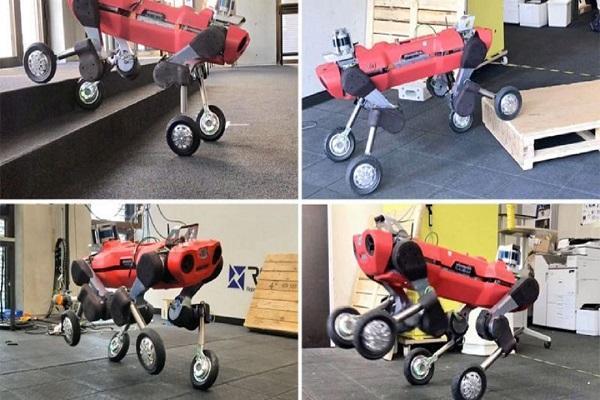 ربات چرخ داری که کار انسان را راحت می نماید