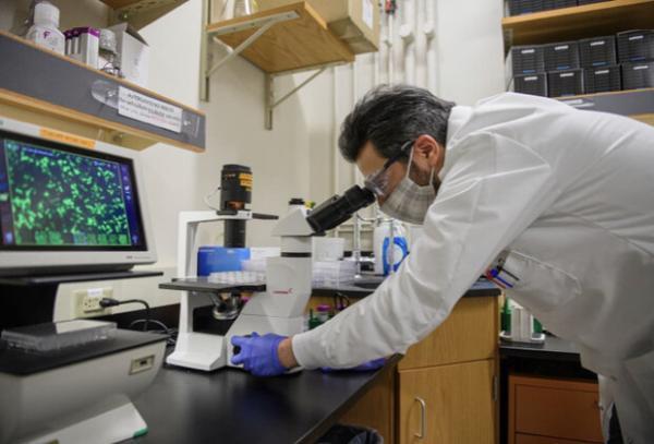 محققان ایرانی دلیل سختی درمان مبتلایان به کرونا را کشف کردند